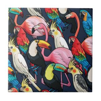 Oiseaux exotiques petit carreau carré