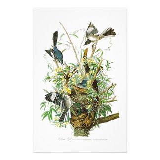 Oiseaux moqueurs de John James Audubon d'oiseau de Papeterie