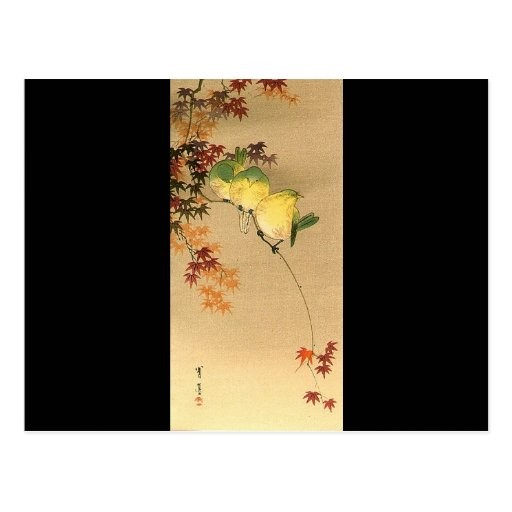 Oiseaux verts sur l'arbre d'érable, art japonais c cartes postales