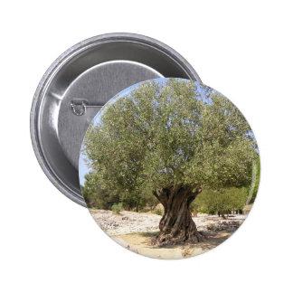 Olivier de l'Israël Badge