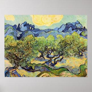Oliviers de Vincent van Gogh, post impressionnisme Poster