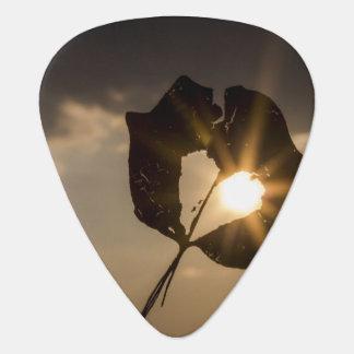 Onglet de guitare de coeur de feuille