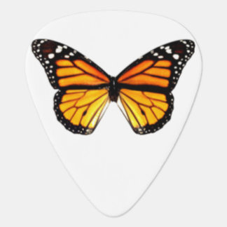 Onglet de guitare de papillon de monarque