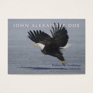 Onithologist - professeur d'ornithologie - cartes de visite