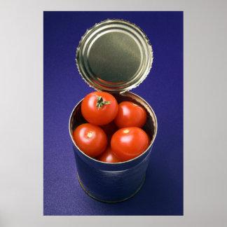 Open peut avec la copie entière de tomates posters