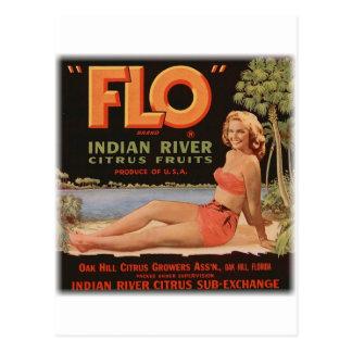 Oranges de Flo vintages Carte Postale
