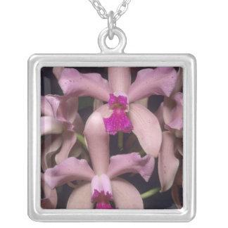 Orchidée, (amethystoglossa de Cattleya), orientale Pendentif Carré