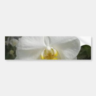 Orchidée Autocollant De Voiture