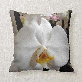 Orchidée blanche coussin