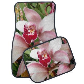 Orchidée blanche et rose de Phalaenopsis Tapis De Sol