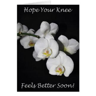 Orchidée de blanc de chirurgie de genou carte de vœux