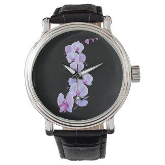 Orchidée de dragon montres