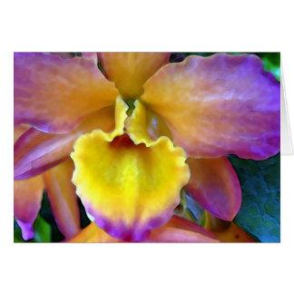 Orchidée de Tropicana Carte De Vœux