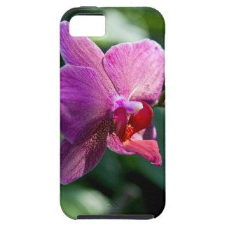 Orchidée magique coques Case-Mate iPhone 5