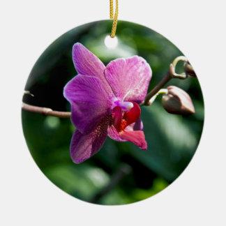 Orchidée magique ornement rond en céramique