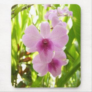 Orchidée - monde de nos propres tapis de souris