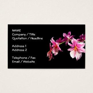 Orchidée rose cartes de visite