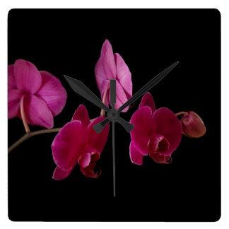Orchidée rose de Dendrobium - fleurs customisées Horloge Carrée