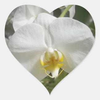 Orchidée Sticker Cœur