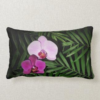 Orchidées avec des palmettes oreillers