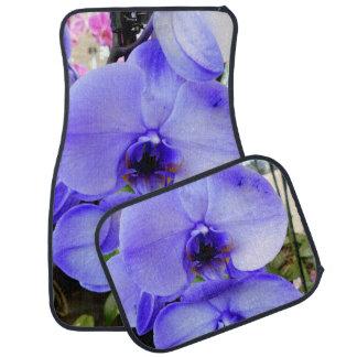 Orchidées bleues tapis de voiture