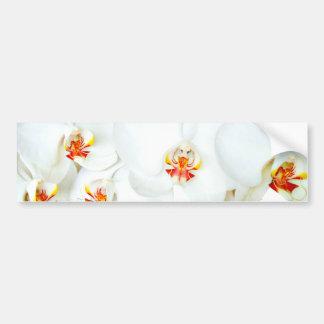 Orchidées Love_ Autocollants Pour Voiture