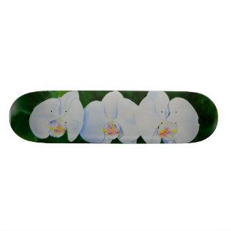 Orchidées Planches À Roulettes