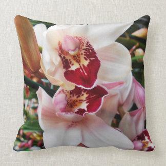 Orchidées roses de Dendrobium Oreiller
