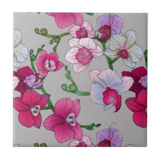 Orchidées roses en fleur petit carreau carré