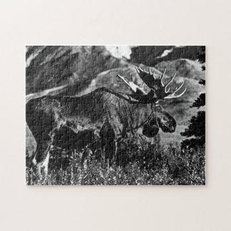 Orignaux 1970 de taureau des Etats-Unis Alaska de Puzzle