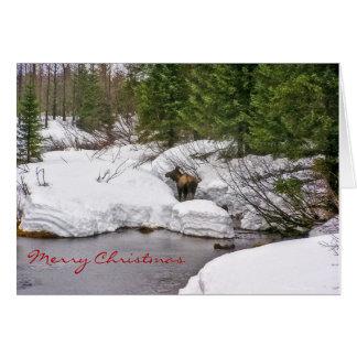 Orignaux dans la carte de voeux de neige