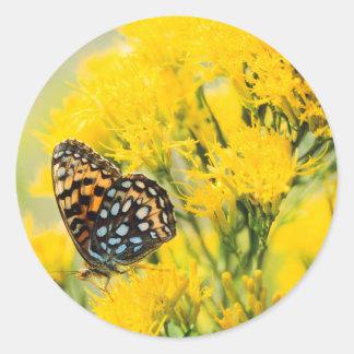 Orignaux de Taureau joutant dans le domaine avec Sticker Rond