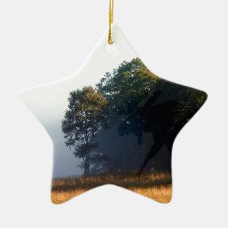 Orignaux d'ombre ornement étoile en céramique