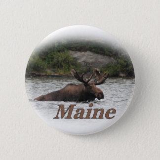 Orignaux du Maine Taureau Badge