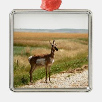 Ornement Carré Argenté Antilope de Pronghorn de prairie