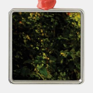 Ornement Carré Argenté arbres dans le buisson