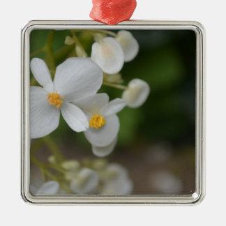Ornement Carré Argenté Bébé floral