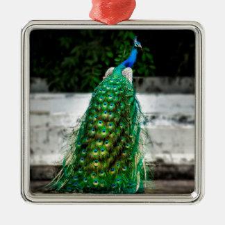 Ornement Carré Argenté belles couleurs d'art de plume de paon