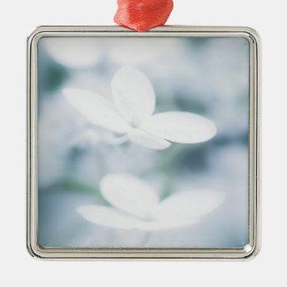 Ornement Carré Argenté Belles fleurs blanches d'hortensia
