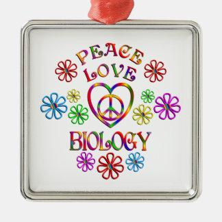 Ornement Carré Argenté Biologie d'amour de paix