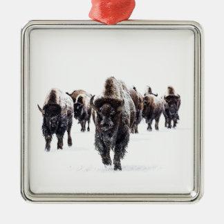 Ornement Carré Argenté Buffalo