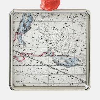 Ornement Carré Argenté Carte du plat XXII de constellations