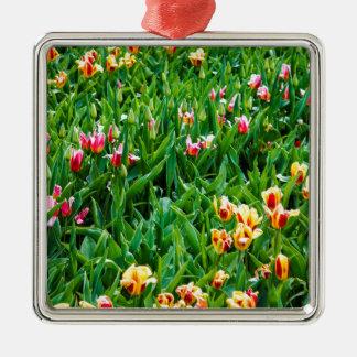 Ornement Carré Argenté Champ avec les tulipes roses et jaunes