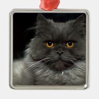 Ornement Carré Argenté chat