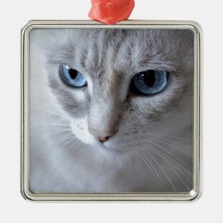 Ornement Carré Argenté Chat de Kisa d'yeux bleus