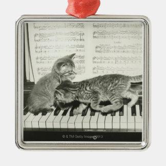Ornement Carré Argenté Chaton deux jouant sur le clavier de piano, (B&W)