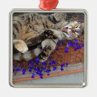 Ornement Carré Argenté chaton si mignon!