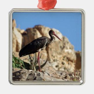 Ornement Carré Argenté Cigogne noire (nigra de Ciconia) sur une roche