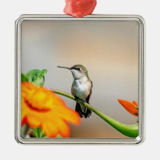 Ornement Carré Argenté Colibri sur un plante fleurissant