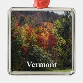 Ornement Carré Argenté Couleur du Vermont